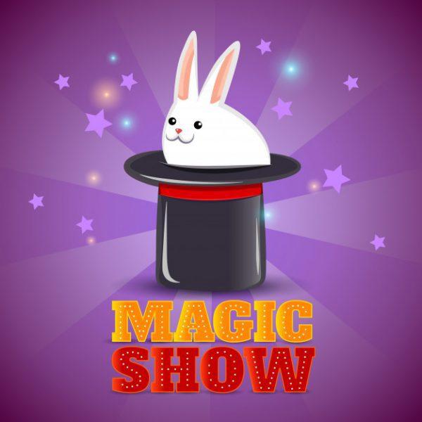 magician parties in miami magic show