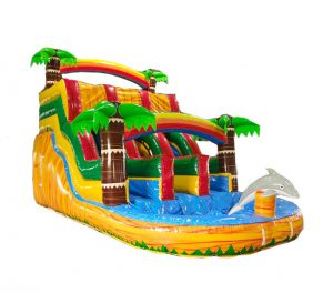 16ft Dolphins Paradise Water Slide