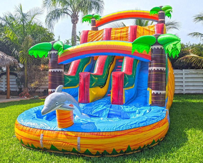 16ft Dolphins Double-Lane Waterslide